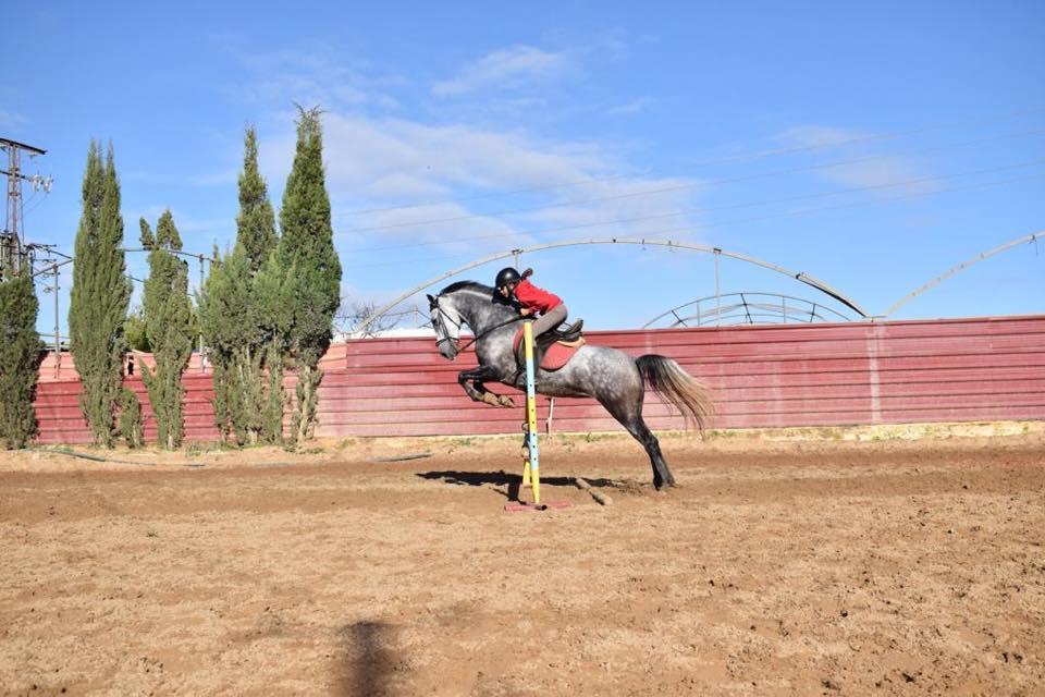 Clases equitación 2018